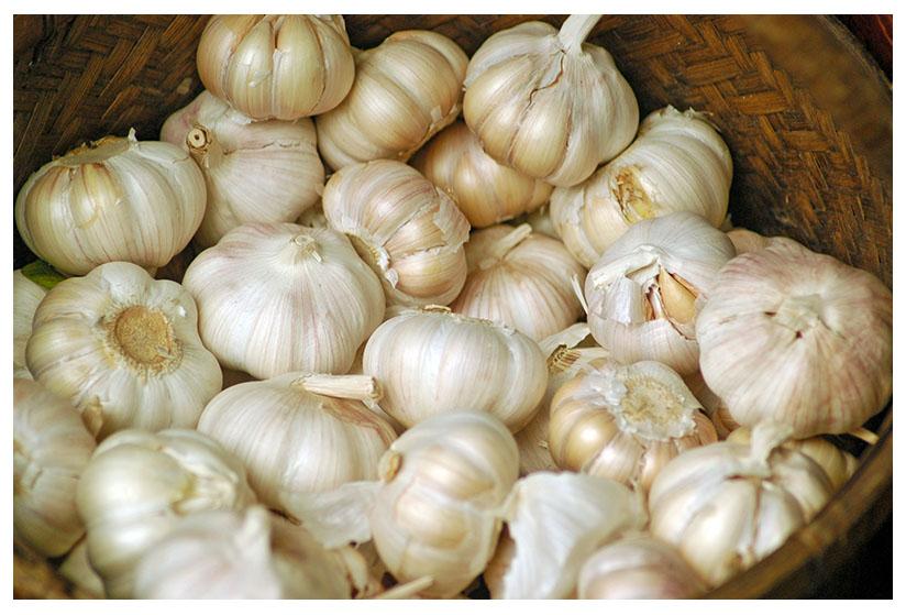 Луковицы ярового чеснока